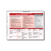 Inhaled Medications Reference Card - 10/pack