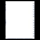 Laser Delivery Receipt - 750/ctn